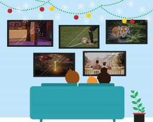 Choix du bouquet TV pour Noël.