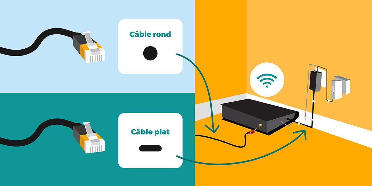 Câble RJ45 rond ou plat ?