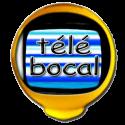Numéro de chaîne et replay de Télé Bocal