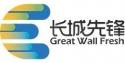 Chaîne TV Great Wall Elite