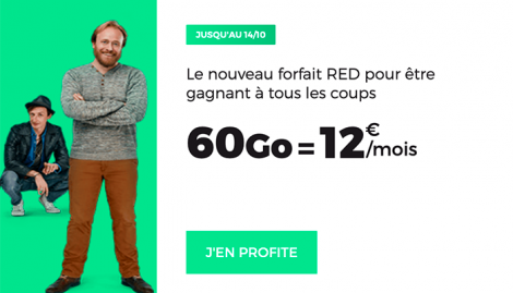 RED 40 GO